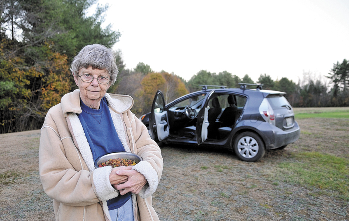 Priscilla Ormsby holds a bowl of dog food next to her car, behind Sunshine Pools on Beglrade Road in Sidney, as she looks for her missing yellow Labrador, Rebel. Ormsby has slept in her car for the past four nights in this field, hoping her dog will return safely.