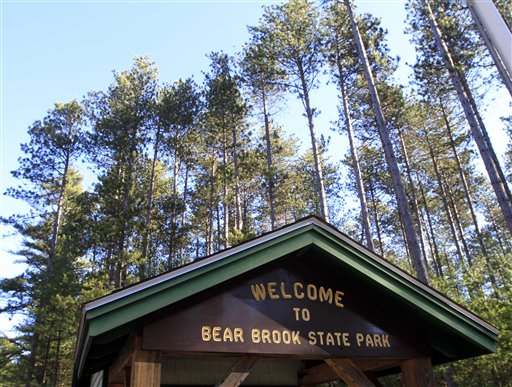 Red Pines stand tall at the entrance to Bear Brook State Park in Allenstown, N.H.