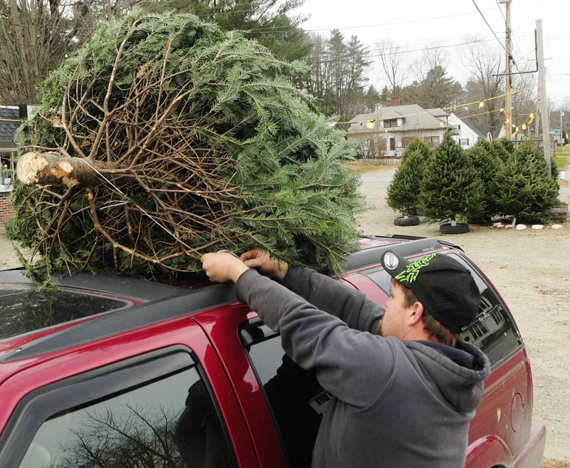 Tree seller Paul Peaslee ties a Christmas tree on top of a customer's vehicle on Tuesday afternoon in Farmingdale. Peaslee said he was part of a family business that had been selling trees in the Webber's Ice Cream parking lot for many years.