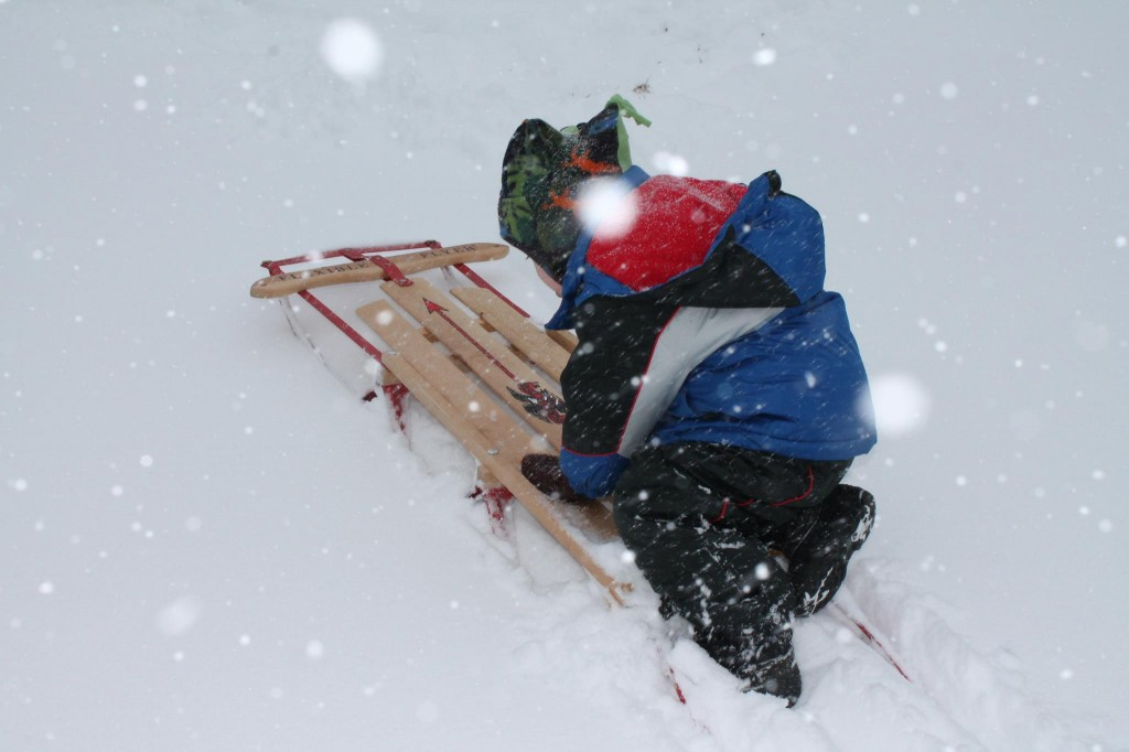 Aaron-Jacoby, 4, of Freedom, took Thursday's golden opportunity to test out his Christmas sled.