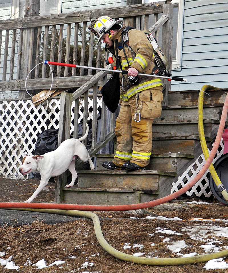 Augusta Fire Department Deputy Chief David Groder escorts a dog to safety, which firefighters rescued from a blaze on Tuesday at 1 Penobscot St. in Augusta.