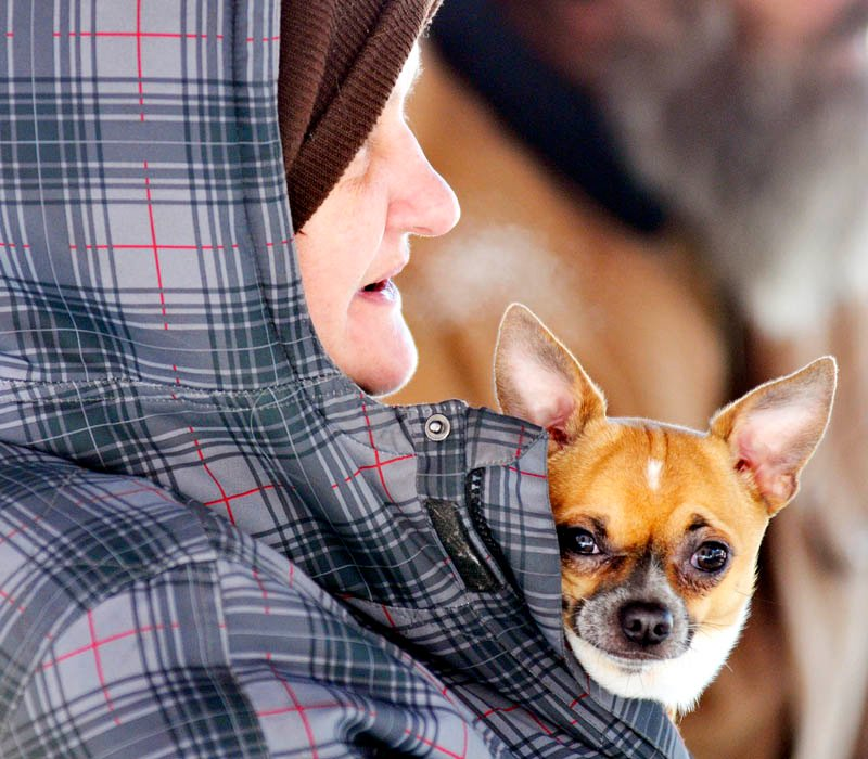 Amy Hopkins clutches her dog to her chest Monday at the Augusta Community Warming Center. Hopkins, her husband and son were evicted Monday from their room in Augusta, she said, following a dispute with another tenant at a boarding house.