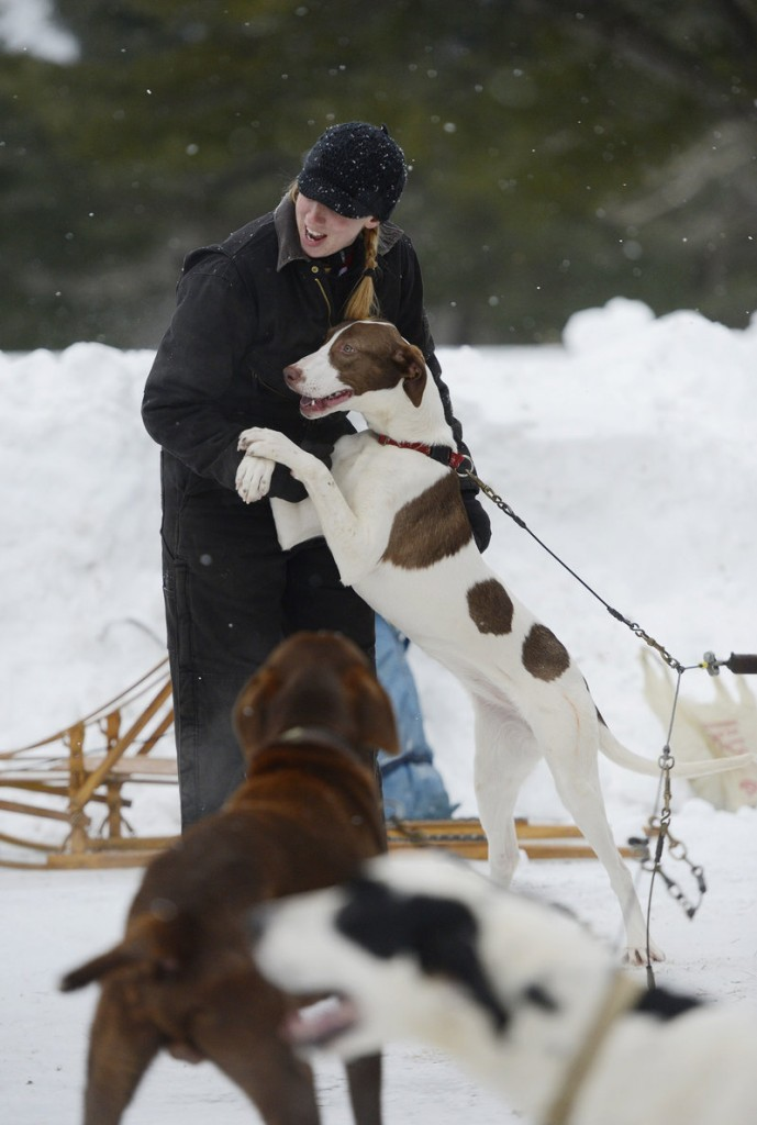 Sara Vanderwood of Oxford is greeted by her dogs, including Kohana, before competing Sunday.