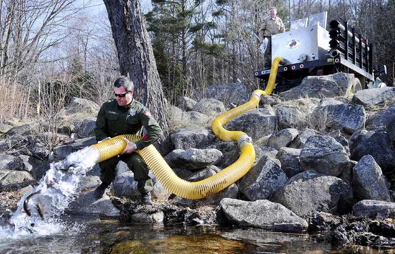 Video trout stocking in farmingdale for Maine state fish