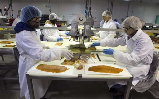 Workers weigh and packaged smoked salmon at the Ducktrap River company, in Belfast. Ducktrap River is owned by Marine Harvest, a Norwegian company that is the world's largest farmed-salmon producer.