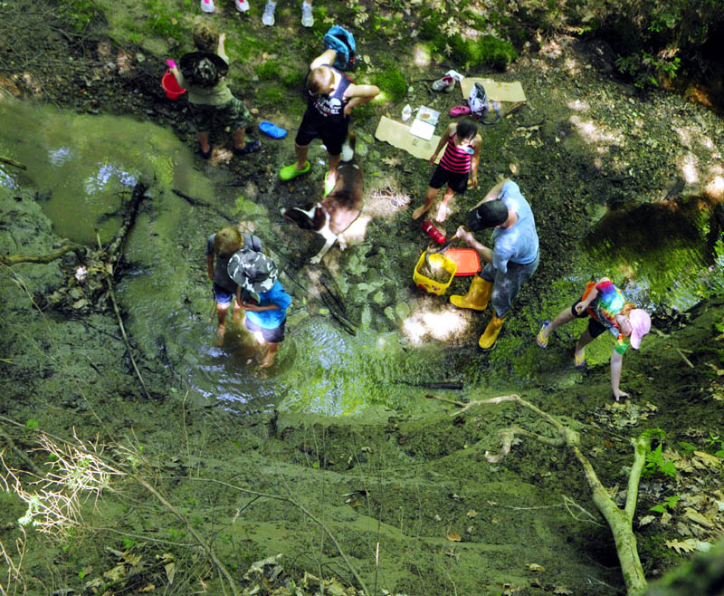 Participants in the Kennebec Land Trust's Children's Nature Program dig in a clay bank along a stream in the Small-Burnham Conservation Area on Tuesday in Litchfield.