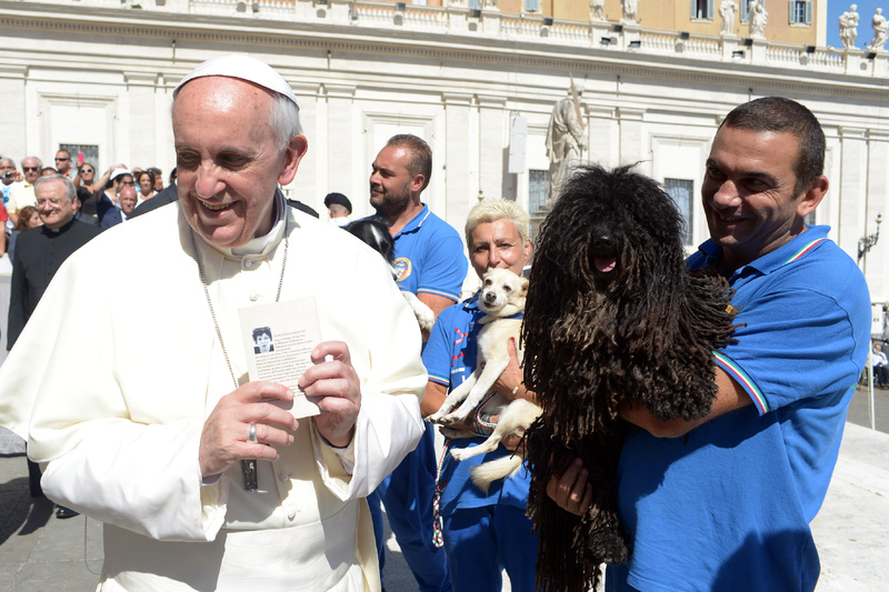 Pope Francis is shown a dog by a member of the Italian Federation of Canine Sports following his weekly general audience at the Vatican on Wednesday.