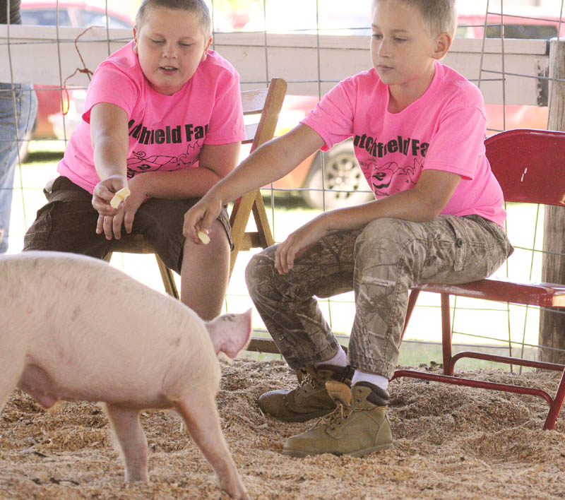 Gabe Stinson, left, and Cameron Ridley try to encourage their pigs towards the finish line with string cheese treats during the pig race on Friday at the Litchfield Fair. The fair runs through Sunday and the fairgrounds are located near the intersection of Hallowell and Plains Roads.