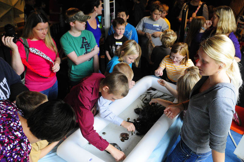 Hannah Arden, far right, talks to visitors about crabs and other things in the Coast Encounters touch tank during Earth Science Day on Wednesday at Maine State Museum in Augusta.