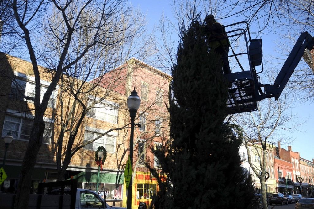 In the spirit: City of Gardiner Buildings and Grounds foreman Pat Chadwick wraps a fir tree with lights Monday in downtown Gardiner. Communities across Maine are attempting to draw more shoppers down town this holiday.