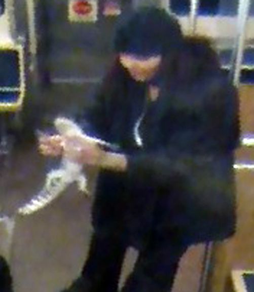 This security camera image provided by the Chicago Transit Authority shows a woman with a two-foot-long alligator aboard a CTA Blue Line train early in the morning of Nov. 1, 2013. Authorities are searching for the woman, who they believe discarded the reptile at O'Hare International Airport. The alligator was captured hours later after a maintenance worker found it under an escalator in a baggage claim area.