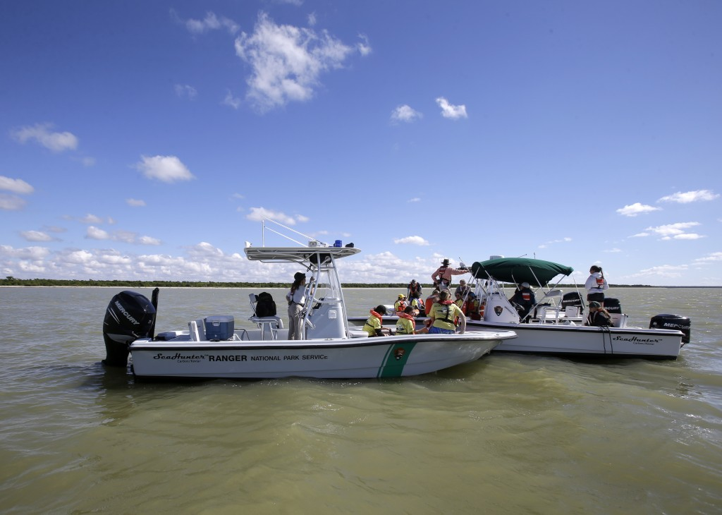 National Park Rangers and National Oceanic and Atmospheric Administration specialists search the ocean for stranded pilot whales Thursday in the Everglades National Park, Fla. A glimmer of hope emerged for at least 20 of the animals spotted swimming in life-saving deeper water.