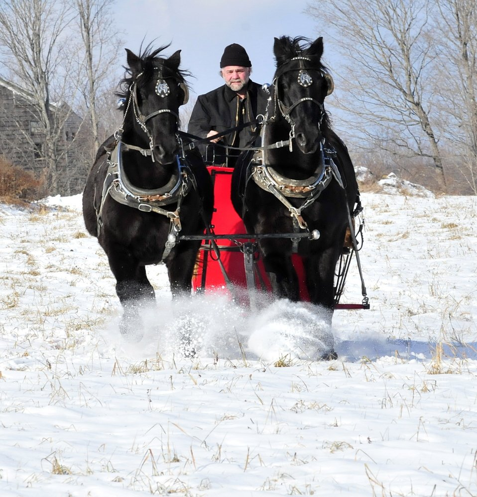 GIDDY-UP: Steve Lemieux and his horses Hector and Tinoir go for a sleigh ride in a field at his home in Fairfield recently.