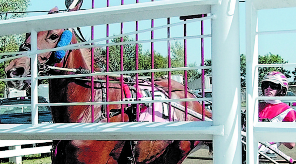 Original: Staff photo by Joe Phelan READY TO START: Jason Bartlett gets Township Brassy into position behind the starting gate before the first race on Friday afternoon at the Windsor Fair. Harness racing has a rolling start behind a gate vehicle. When they cross the starting line the gate opens and the car speeds ahead and out of the way of the race. Published: Staff photo by Joe Phelan READY TO START: Jason Bartlett got his start racing at the Windsor Fair and has moved on to become one of the top drivers in the country. He is well on his way to a third track title at Yonkers Raceway in Yonkers, N.Y.