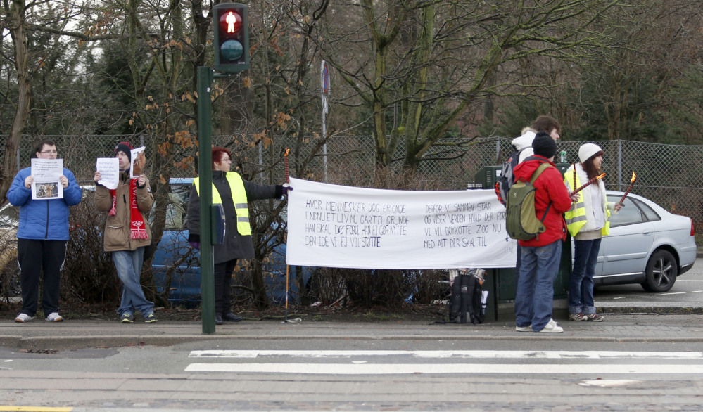 People protest outside Copenhagen Zoo where Marius, a young male giraffe, was slaughtered and fed to lions on Sunday. The zoo turned down offers to save the animal.