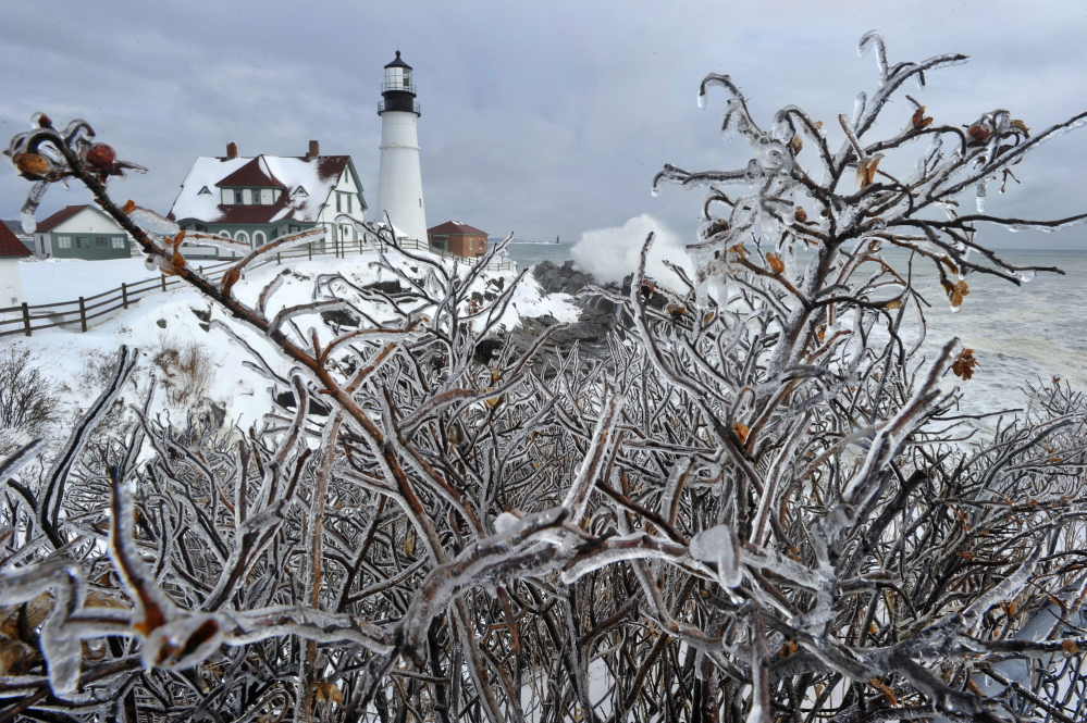 Ice-encased rosebushes frame a view of Portland Head Light in Cape Elizabeth on Friday, a day after heavy wet snow blanketed the state.