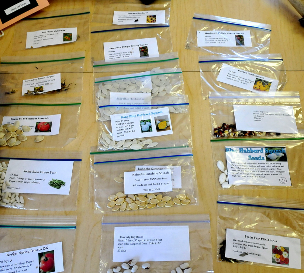 ON LOAN: Packages of vegetable seeds are available for patrons of the Norridgewock Public Library in a program that provides the seeds at no cost and asks that growers return seeds in the fall from harvested produce.
