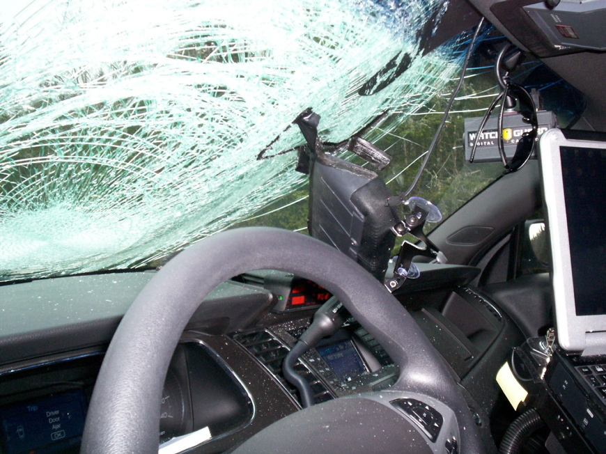The turkey that collided with Maine State Trooper Tucker Bonnevie's cruiser early Thursday morning broke the windshield and left a large dent on the driver's side.