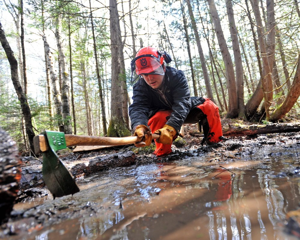 DIRTY WORK: Zach Monroe, a Unity College senior and trail crew coordinator, digs a trench for a log as he helps a crew to build a bog bridge on the Nature Trail as part of Unity College Community Trail Day on Saturday.