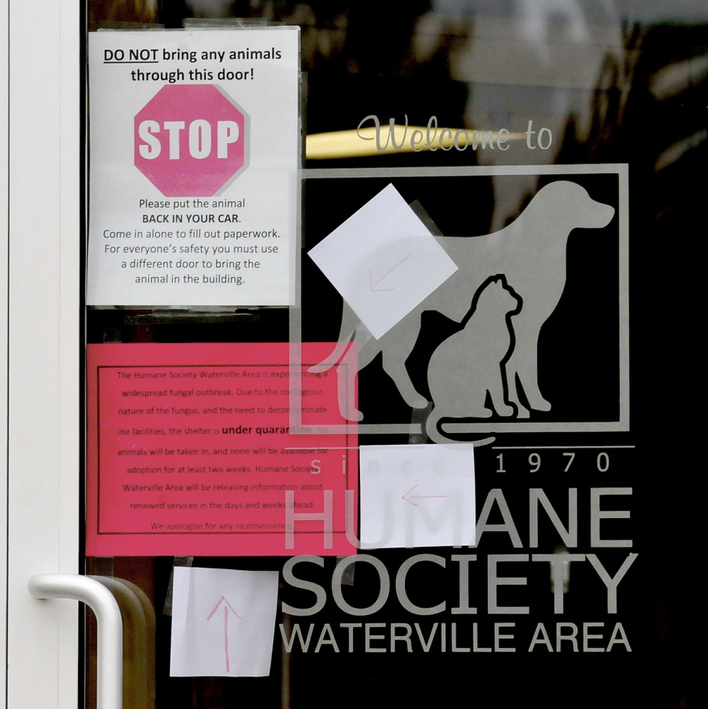 STOP: Signs on the entrance to the Humane Society Waterville Area tell patrons to stop and not bring animals into the shelter because of a ringworm outbreak.