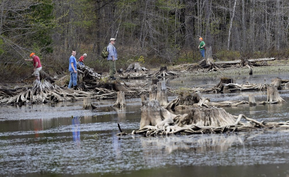 Volunteers search the shoreline of Lake Arrowhead in North Waterboro for Jaden Dremsa on May 12. The teenager, who had been diagnosed with a mild form of autism, was last seen May 8. His body was found Saturday.