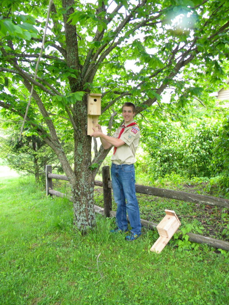 Eli Fish, a sophomore at Gardiner High School, has made two dozen hand-crafted bluebird houses to be installed at Viles Arboretum in Augusta for his Eagle Scout Project. Fish is a member of Boy Scout Troop 672. He received assistance on the project from Troop Leader Matt Keene, members of the Troop, as well as a grant from Lowe's of Augusta. About half the boxes have been installed and the rest will be installed in time for next year's nesting season.