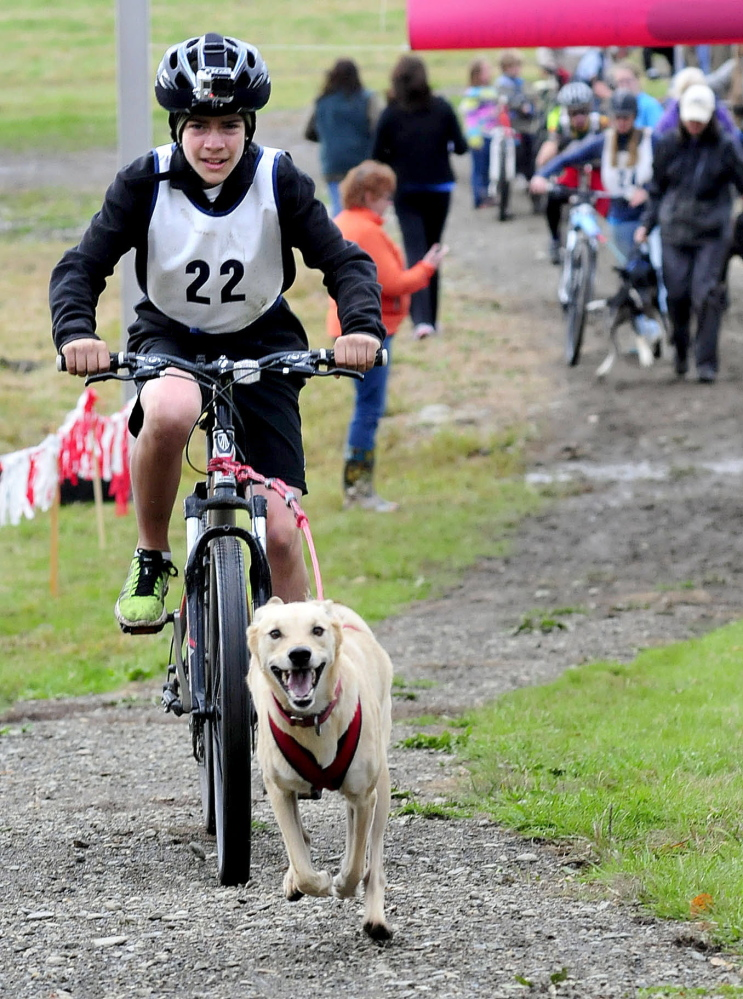 Asa Szegvari and his dog Shiva take off at the start of one of the wheeled dog sledding races at the Central Maine Dryland Challenge at the Quarry Road Recreation Center in Waterville on Sunday.