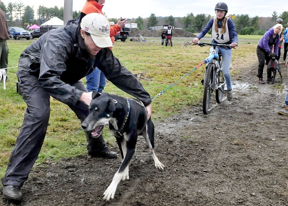 Co-organizer Jocelyn Bradbury tries to restrain sled dog Ullr as rider Melissa Murphy waits for the start at a Central Maine Dryland Challenge wheeled dog sled race at the Quarry Road Recreation Center in Waterville on Sunday.