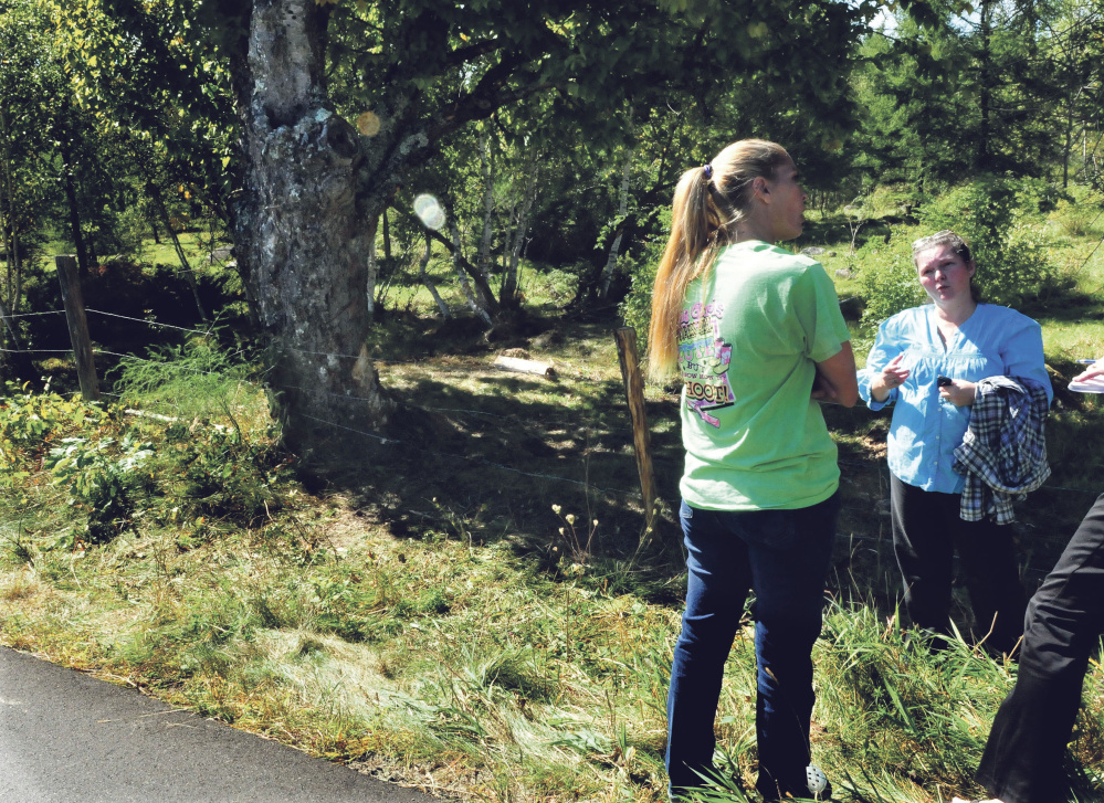 Jessica Robinson, left, and Teanda Smith talk Monday after the car accident on Raymond Road in Palmyra Sunday that killed driver Aimee Lasco, who hit the tree at left. Lasco's two daughters and a friend escaped with minor injuries. Smith is the friend's grandmother.