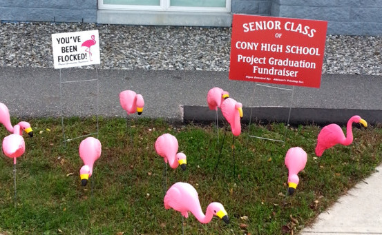 Flock a neighbor, friend or business and help Cony Project Graduation.