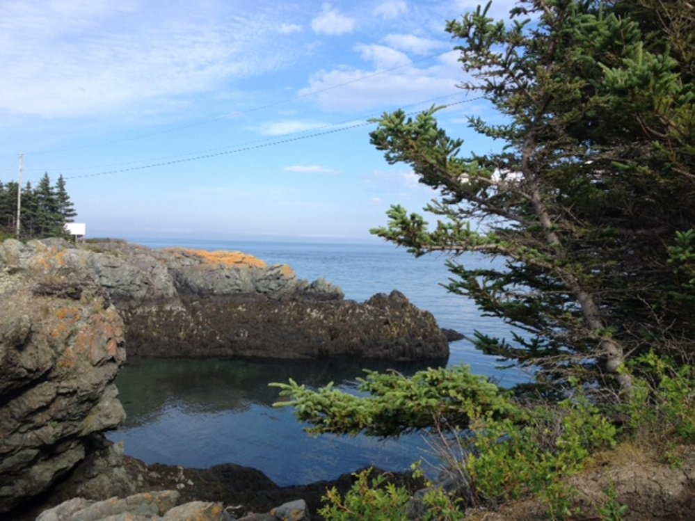 A view of the ocean near Head Harbour Lightstation at the northern tip of Campobello Island in New Brunswick. The island across the international bridge from the easternmost town in the U.S., Lubec, is the Calder ancestral home.