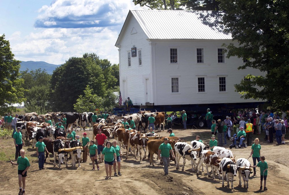 Teams of oxen help pull the Orleans County Grammar School on Monday in Brownington, Vt. Hundreds of people showed up to watch the building, built in 1823, move back to its original site.