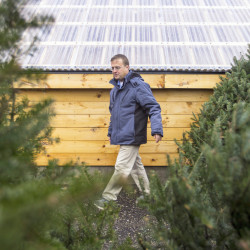 Shown among Christmas trees at Cultivation Works Farm in Saco, Haley Cornwall is one of two farmers employed by Teenie Greenies