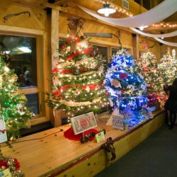 The Rangeley Rotary and Rangeley Lakes Chamber of Commerce's Parade of Trees fundraiser was held Dec. 10 at Saddleback Mountain.