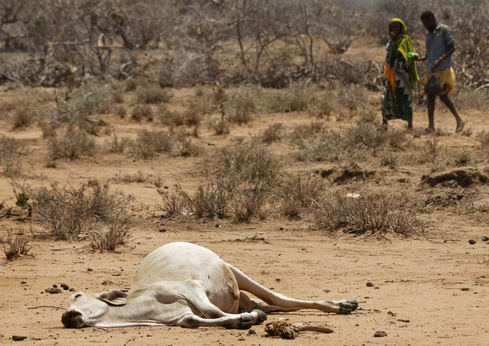 Villagers walk past a dead cow in the village of Bandarero on the Ethiopian border in northern Kenya. The U.N. humanitarian chief, Stephen O'Brien, toured the village and called on the international community to avert a famine.