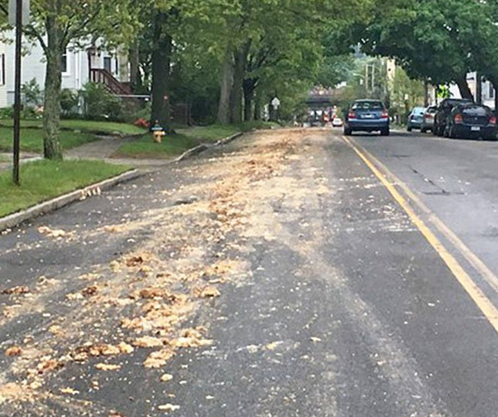 A lane of St. John Street between Park and Brighton avenues in Portland is strewn with chicken parts Tuesday morning. A truck's tailgate malfunctioned, allowing the waste to fall out.