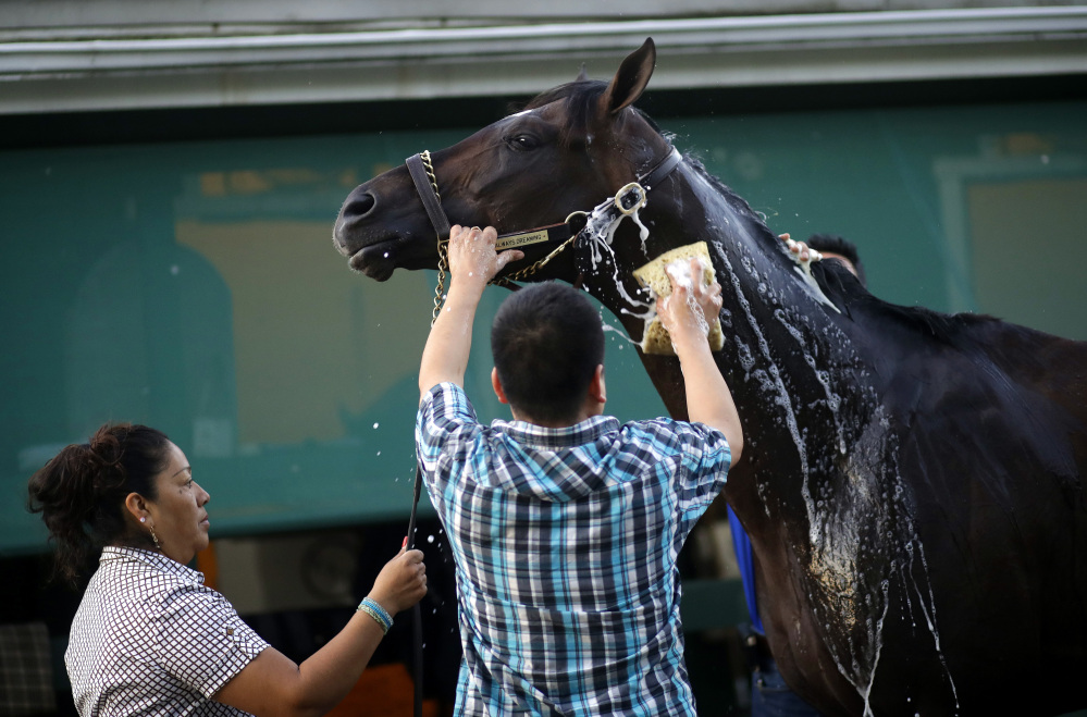 Preakness offers encouraging news for Always Dreaming