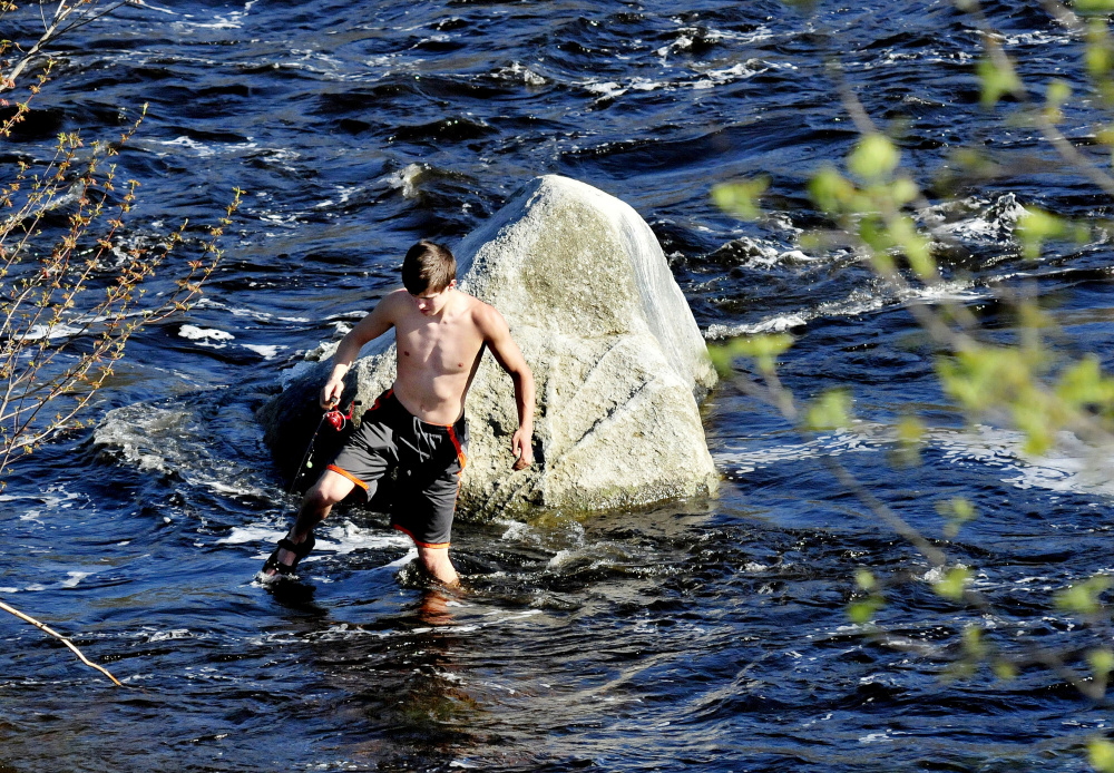 Fisherman Joe Rossignol carefully makes his way back to shore after wading in the Sebasticook River in Benton to fish off the rock on a warm Tuesday.