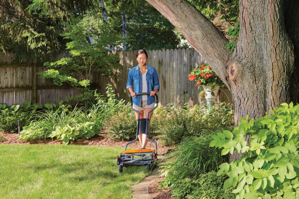 Using a reel mower allows you to adjust the cut height for the season.