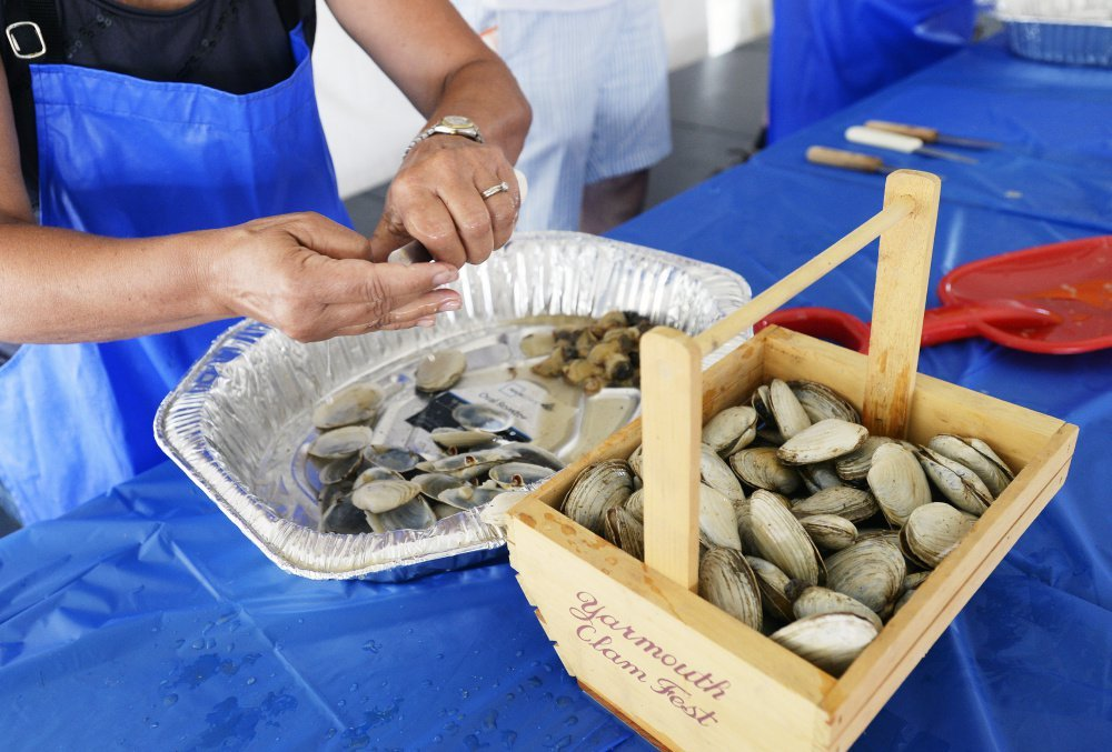 How to Shuck Clams How to Shuck Clams new foto