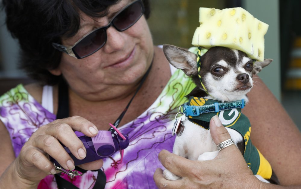 Gloria Baenen brought her dog Vinnie to an area outside Lambeau Field in Wisconsin before the Green Bay Packers game Sunday. Fans who prefer to leave their canines at home could take advantage of apps to order up a dog-walker or pet-sitter, even on short notice.