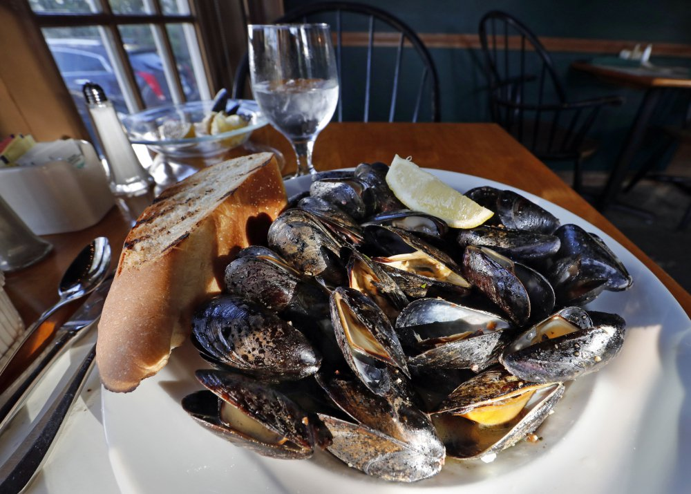 Maine mussels are loved by seafood fans, but the annual harvest has dipped in recent years.