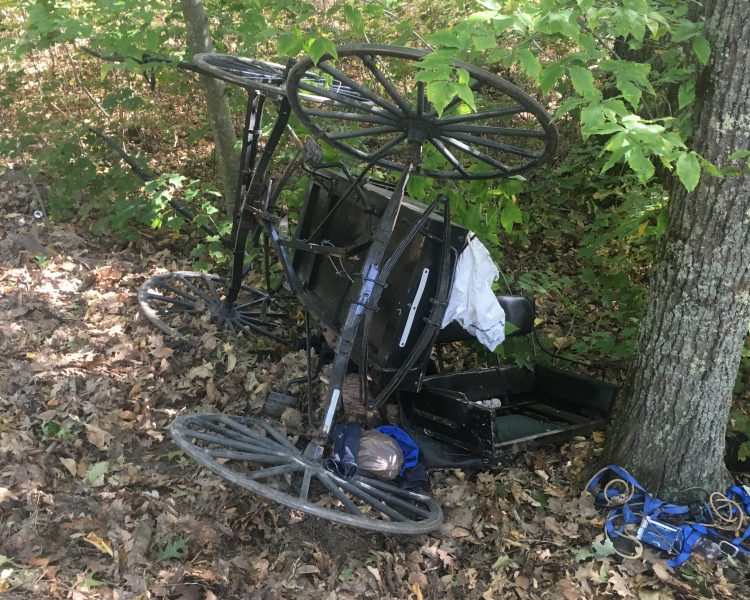 A sport utility vehicle hit an Amish buggy Oct. 4 in Whitefield, prompting town officials to discuss possible implementation of additional safety measures on town roads.