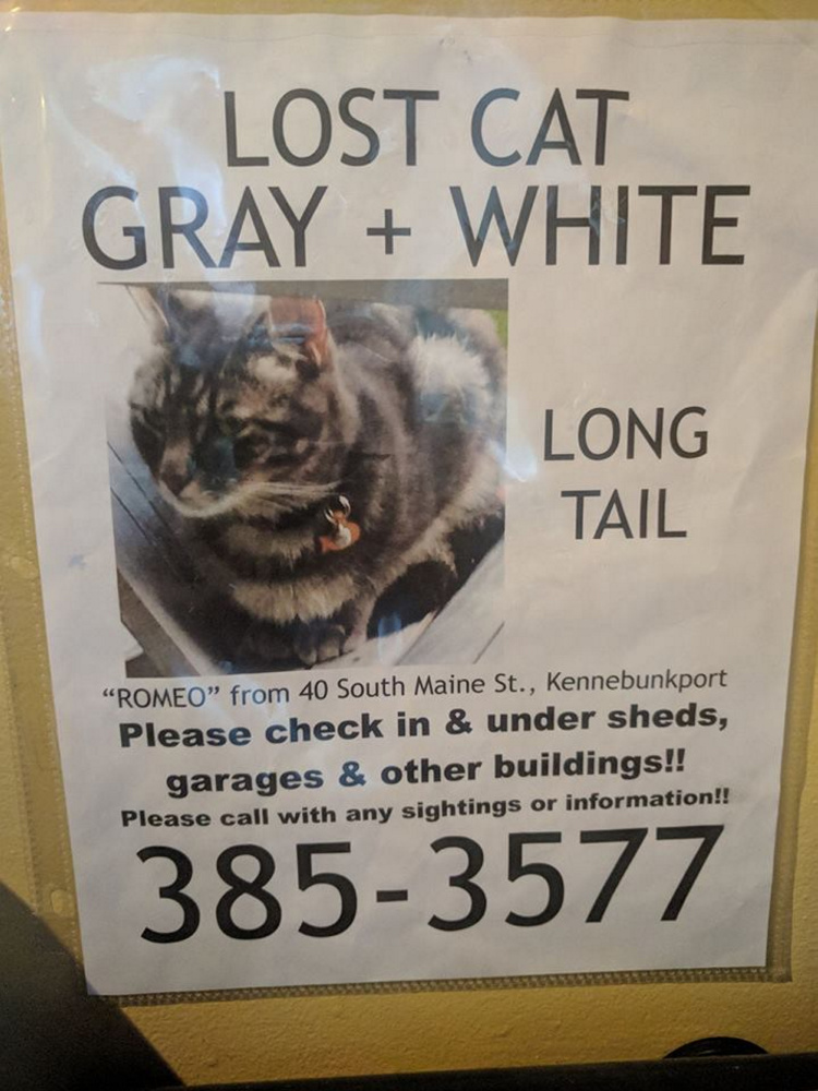 A poster in the Kennebunkport area was distributed when Romeo disappeared in 2016.