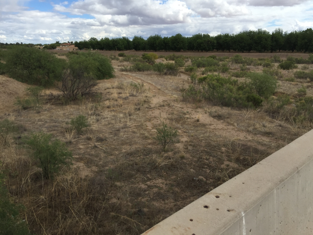 Writer George Smith came across rivers in Arizona with no water in them while on a birding trip with his wife Linda last April.