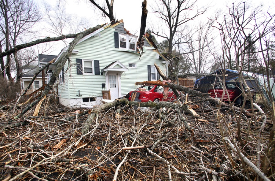 A tree toppled by high winds Friday damaged a car and the second floor of a home, left, at 11 Gertrude St. off Washington Avenue in Portland.