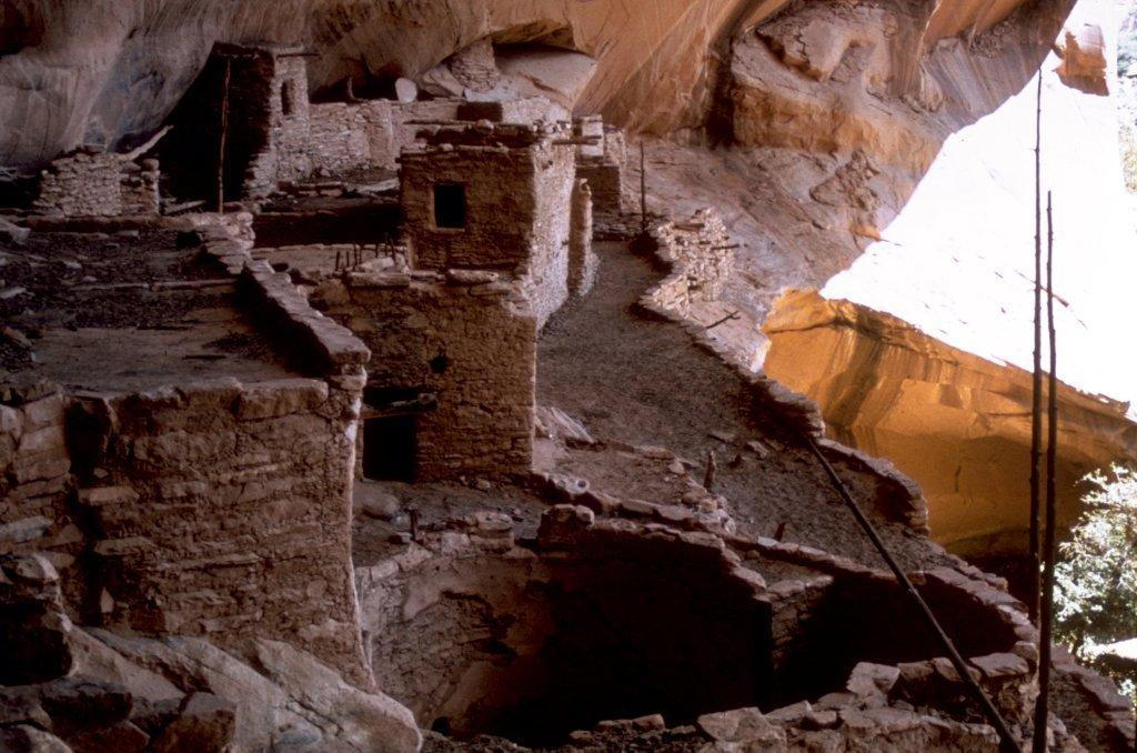 Well-preserved cliff dwellings are the highlight of the Navajo National Monument.