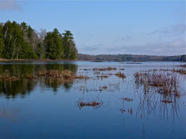 A view of Dresden Bog looking north from the south end. The bog is a hidden gem for paddlers looking for beautiful scenery and serenity.