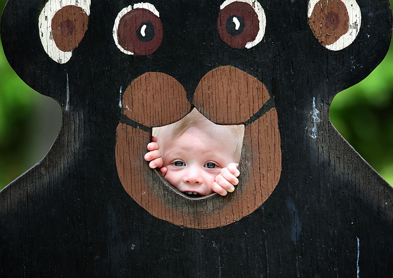 Jaxson Grivois, 14-months-old, of Belgrade peeks through the bear cutout as he poses for a picture in the picnic area at the Maine Wildlife Park in Gray on Saturday.