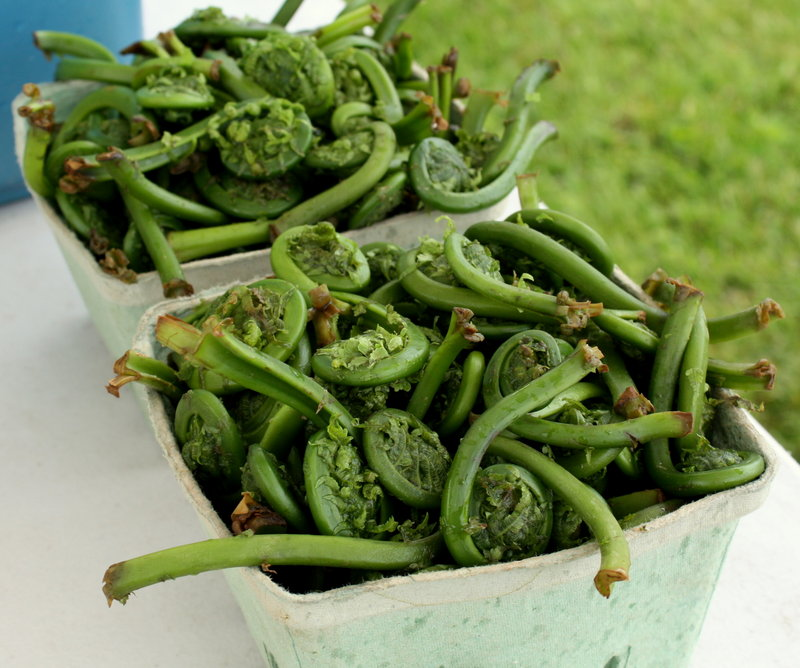 Bright, grassy, astringent, just-bitter-enough fiddleheads: The season just started, and it'll be over very soon.